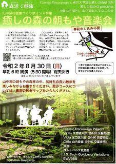 癒しの森1.jpg